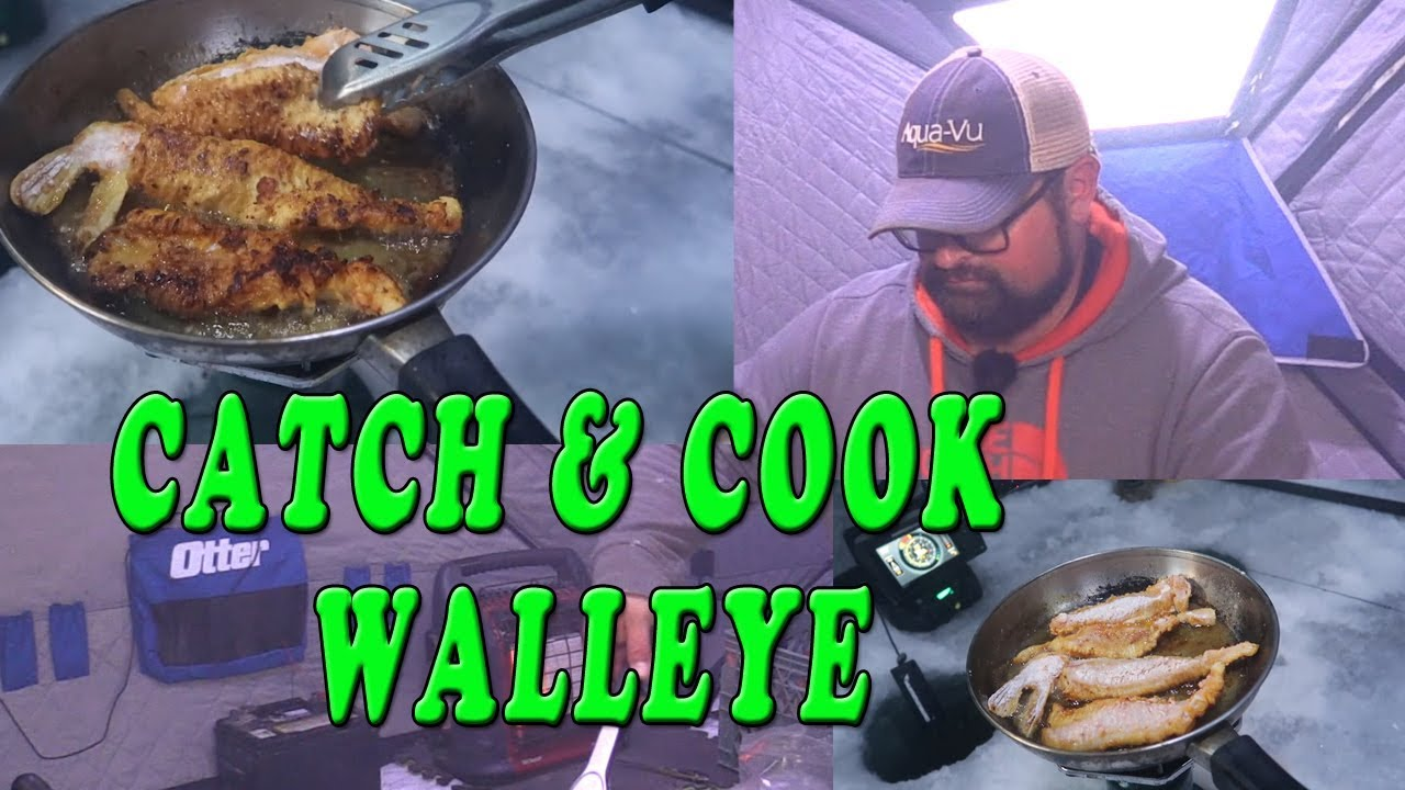Download Catch and Cook Walleye!!