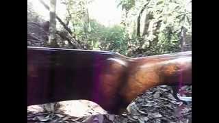 Espingarda cbc calibre 32