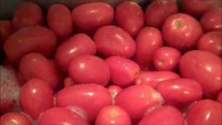 Aunt Duddie Cans Tomatoes