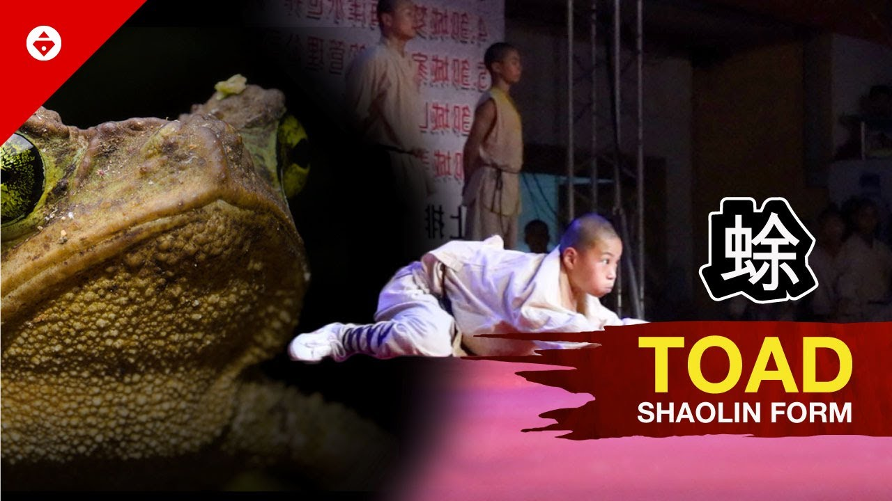 Shaolin TOAD Form by WARRIOR Monk | BEST KUNG FU - YouTube