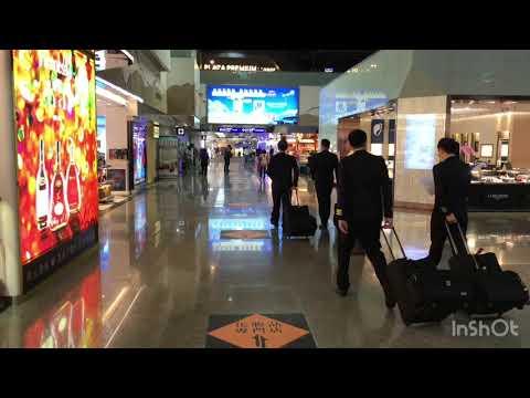 凌晨的飛機準備登機了 //桃園~曼谷// 第一次遇到桃園機場沒什麼人《曼谷自由行EP7》