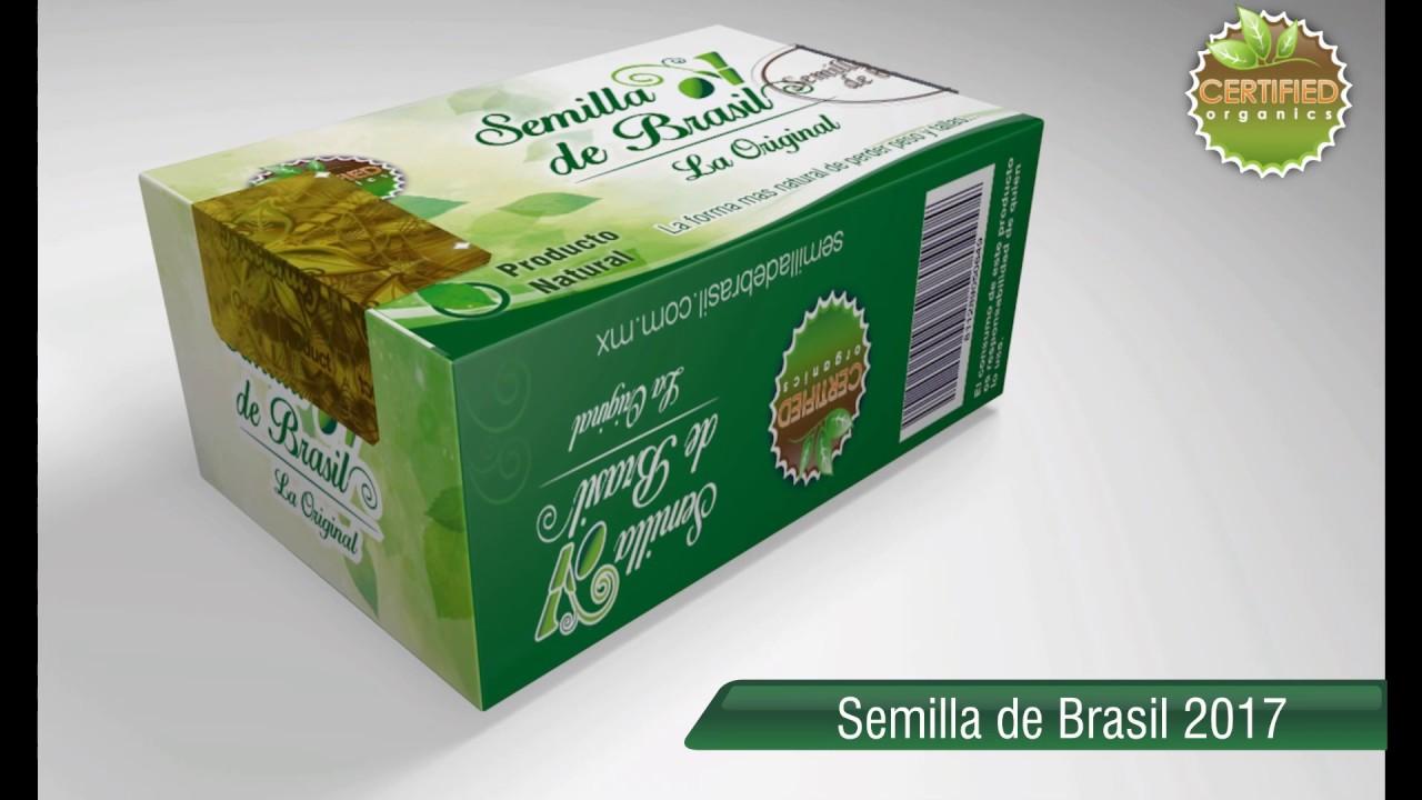 Semilla De Brasil La Original Youtube