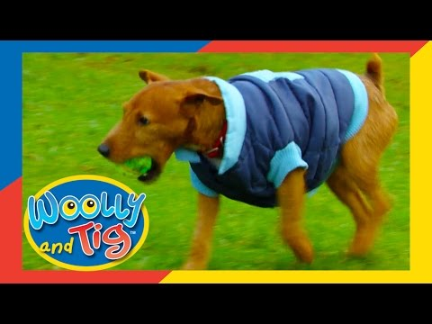 Woolly And Tig - The Dog