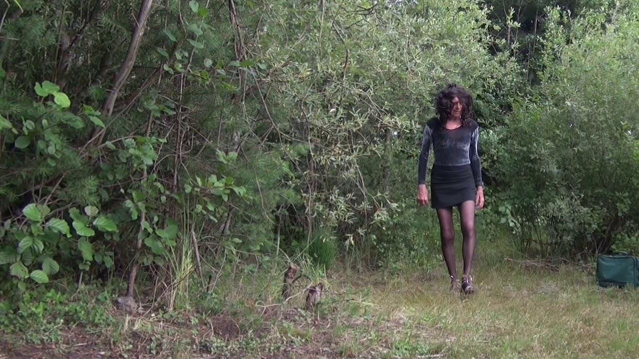 Download Als DWT zum Forstsee