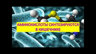 cocci bacillus férfiak kenetében