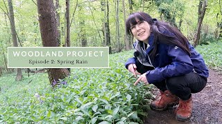 A Very Wet May: Spring time Woodland Photography.