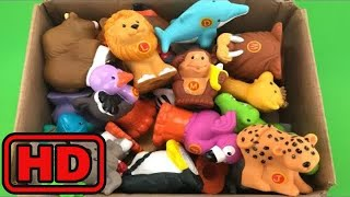 Kid -Kids -Learn Wild Zoo Animal Names for Children Box of Toys Safari Animal Educational Video