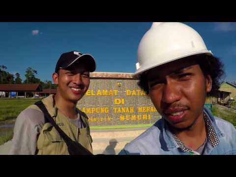My Job My Adventure | MANGROVE ELECTRIC PLN BINTUNI
