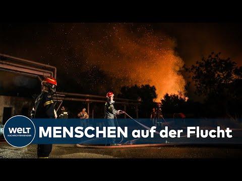 FEUER AUßER KONTROLLE: Waldbrände - Tausende fliehen vor Großbrand nahe Athen | WELT Thema