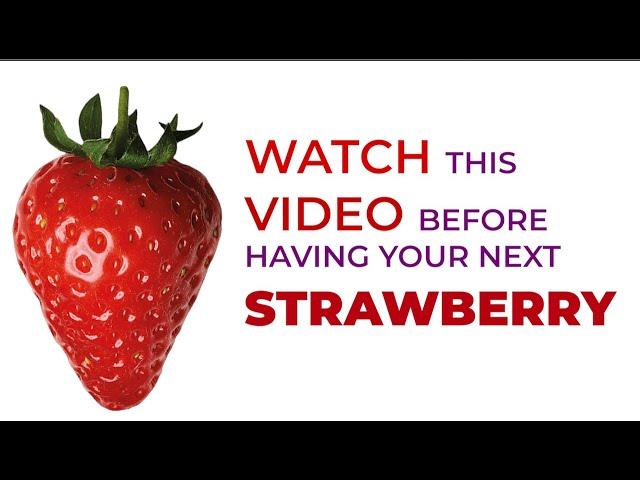 स्ट्रॉबेरी खाने से पहले यह वीडियो देखना न भूलना| Watch this video before having your next Strawberry