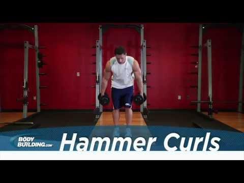 Hammer Curl - Biceps Exercise - Bodybuilding.com