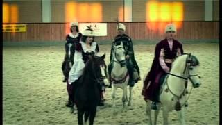 Dance kadryl on arabian stallions