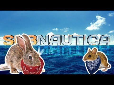 Subnautica Gameplay #7 - The Legend of Bunny Foo Foo