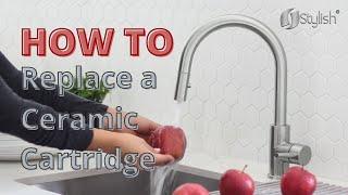 How to Replace Ceramic Cartridge   Stylish