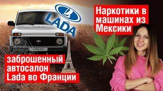 Заброшенный салон Lada, Fusion с марихуаной, девушка спасая кошку разнесла 11 авто - VeddroNews e112