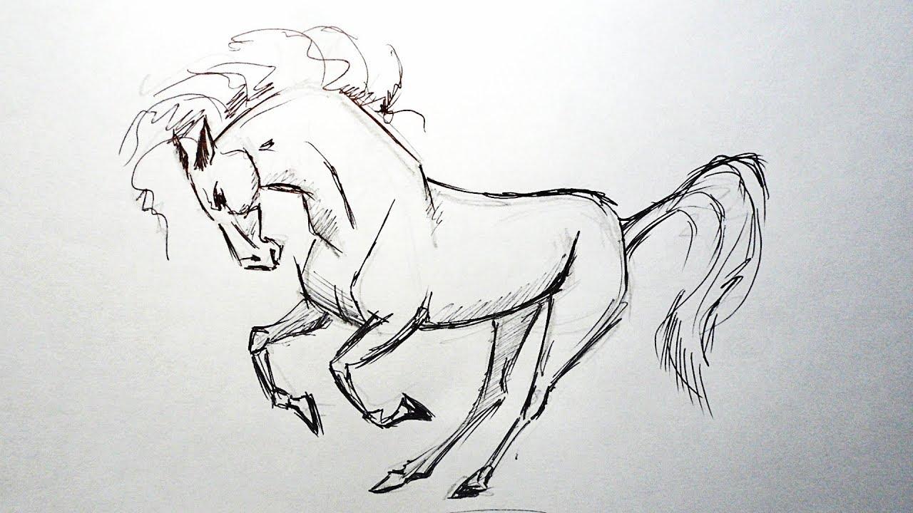 Картинки лошадей аниме карандашом
