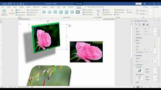 Microsoft word 2016: Formatting Custom Pictures Style in Tamil