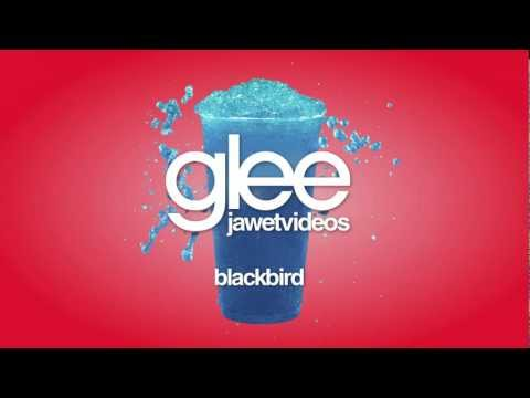 Glee Cast - Blackbird (karaoke version)