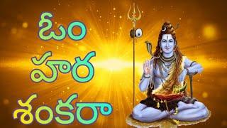 OM HARA SANKARA HARA HARA//SIVA SONGS//MUKKANTI SONGS//TELUGU GOD SONGS - 2020/Telugu lord blessings