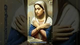 🔥Tefillah (ടെഫില്ല) 🔥Daily Morฑing Prayer Reflection🔖 Episode - 488.