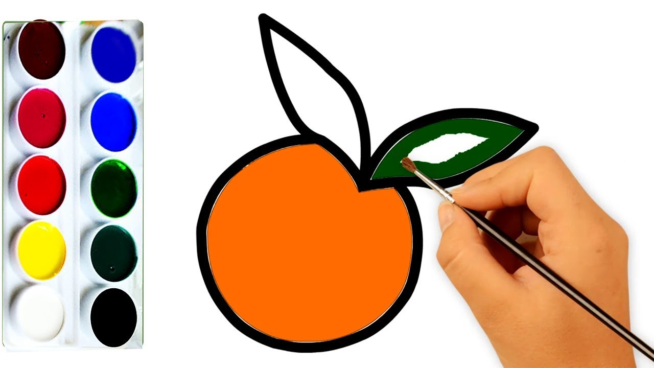 Oranges Coloring Pages - Best Coloring Pages For Kids | 720x1280