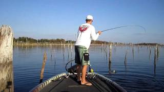 Full video bass fishing with lake fork guy for Lunkerstv fishing rods
