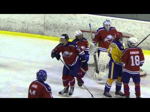 21. 2016 WSI 02 Sweden Selects - Czech Selects