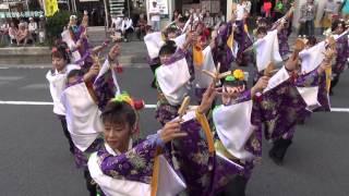 2013 ODAWARAえっさホイおどり・栄町会場.