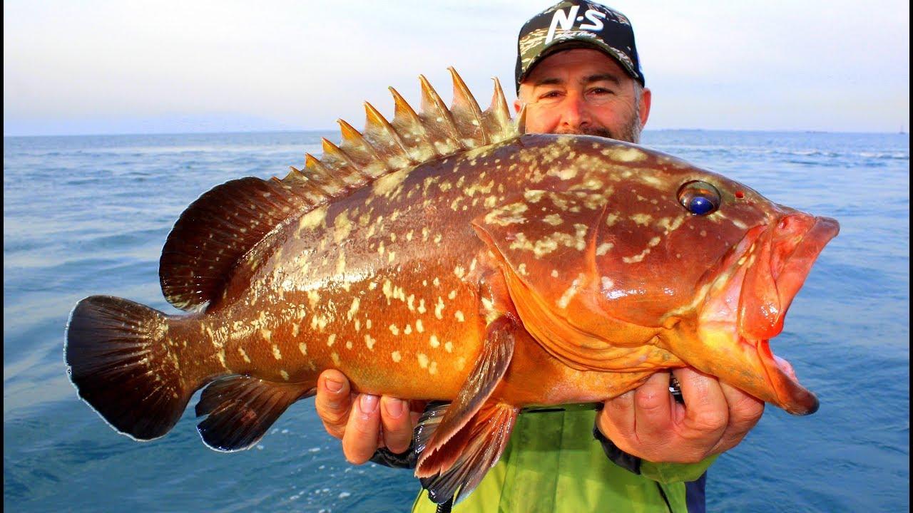 Denizlerin En Nadir Balığını Yakaladık / Nesli Tükendi Sanılan Canavar