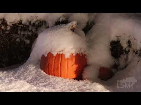 10-31-2019 Cedar Rapids, IA - Halloween Snow Storm, Plows And Decorations