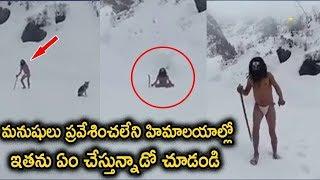 Aghora Sadhu Praying For Lord Shiva At Himalayas || #aghorasadhu || #himalayas || Top Telugu Media YouTube Videos