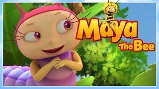 Maya the bee - Episode 28 - Mas has a crush