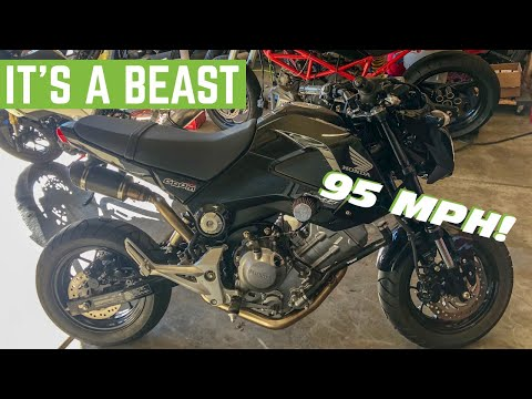 What's It Like To RIDE A 300CC Swapped HONDA GROM? - YouTube