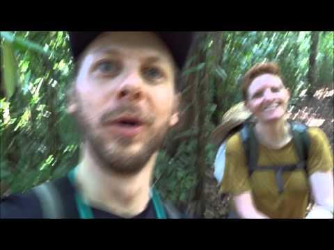 La Península de Osa y El Parque Nacional Corcovado (Costa Rica1)