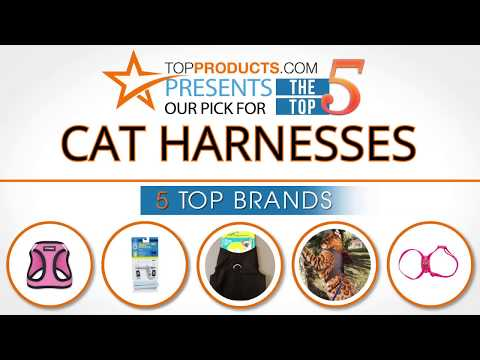Best Cat Harness Reviews 2017 – How to Choose the Best Cat Harness