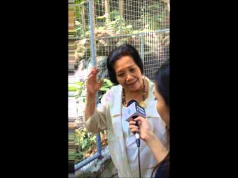 Philippine Myths & Legends: Maria Makiling