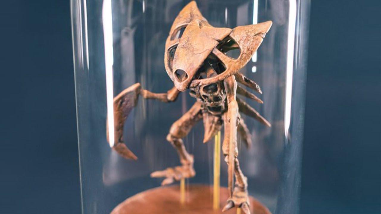 【ポケモン】カブトプスの化石標本作ってみた【フィギュア】工作 | Kabutops Fossil - Pokemon