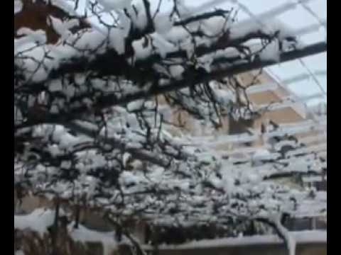 Snow In Amman 08 01 2015