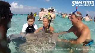 STAFA REISEN Reisevideo: Grand Cayman, Karibik, Großbritannien