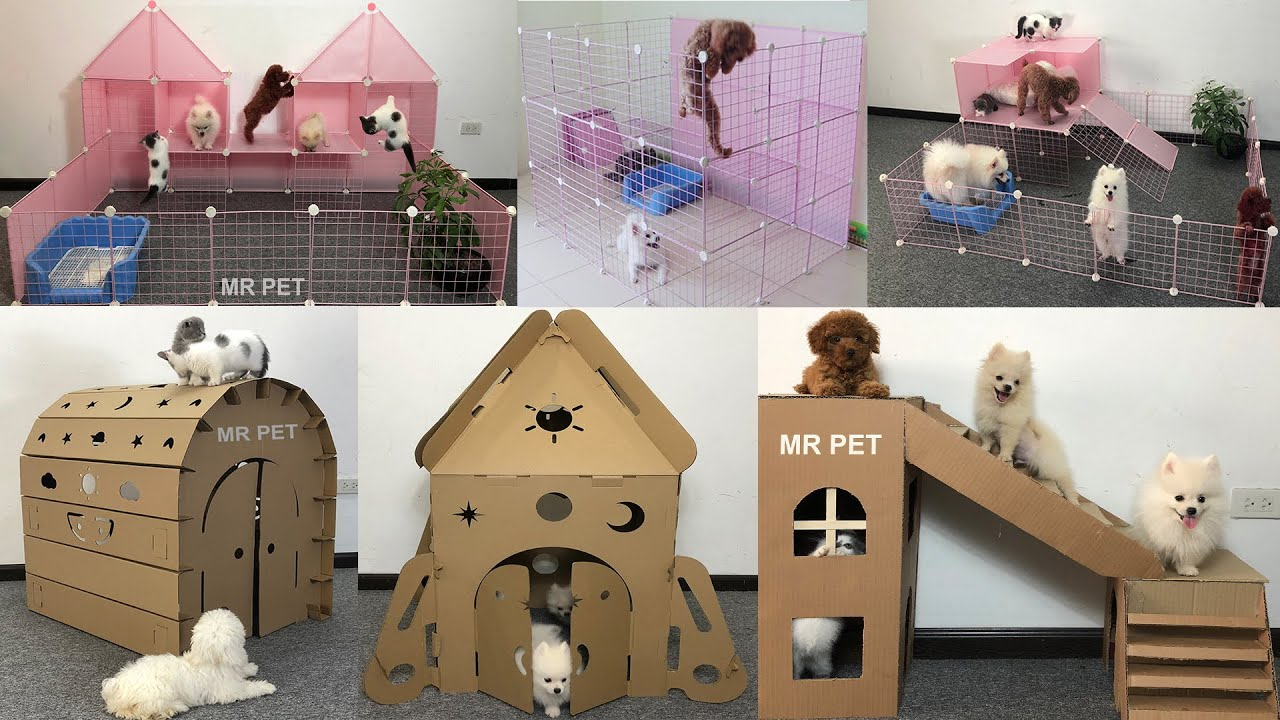 TOP 6 How To Make Dog House For Cute Pomeranian Puppies, Poodle and Kitten | MR PET