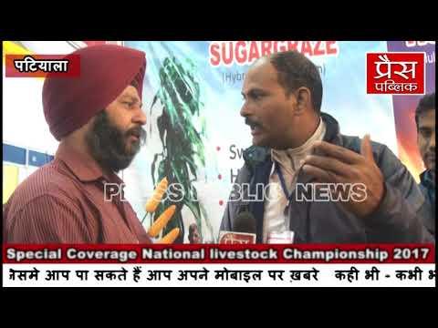 Advanta Forage Guide, National livestock Championship 2017 at Patiala, Punjab