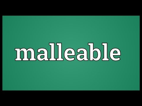 Malleable Meaning