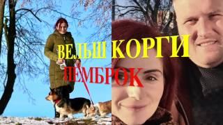 ОБЗОР ФИЛЬМА 28 ПАНФИЛОВЦЕВ