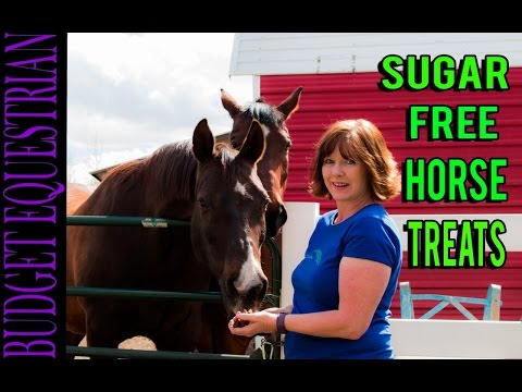 DIY Horse Treats Sugar Free! Easiest Recipe Ever!