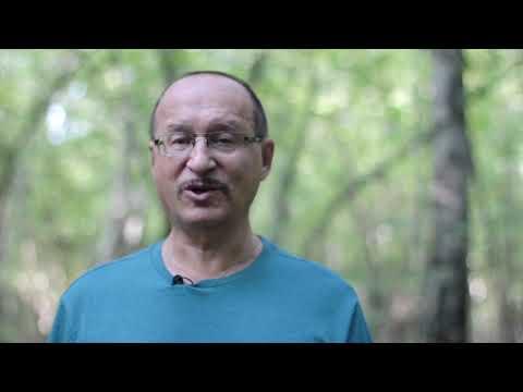 Секс, оргазм и гормональные таблетки || Юрий Прокопенко 18+