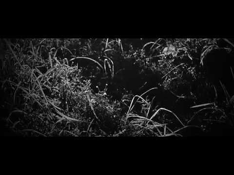 MAXIMONO - The Cannibal (Official Video)