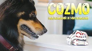 Робот COZMO з штучним інтелектом - маленький і милий домашній вихованець [огляд]