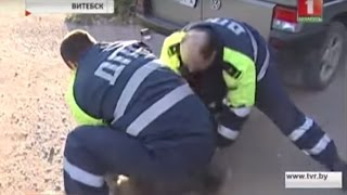 Погоня в час пик за нетрезвым водителем в Витебске