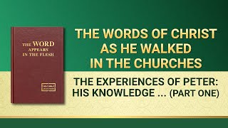 "The Word of God | ""The Experiences of Peter: His Knowledge of Chastisement and Judgment"" (Part One)"