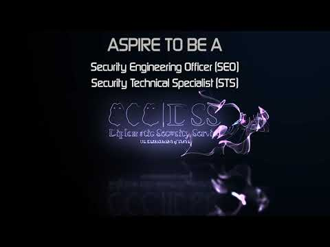 Aspire to be a Security Engineering Officer (SEO) Security Technical Specialist (STS)